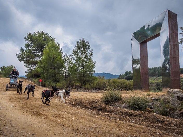 Copa Gos Artic de Canicross Mushing i Bikejoring (La Pobla de Cervoles)