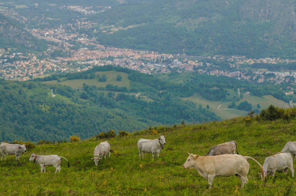 El Castillo Condal de Foix