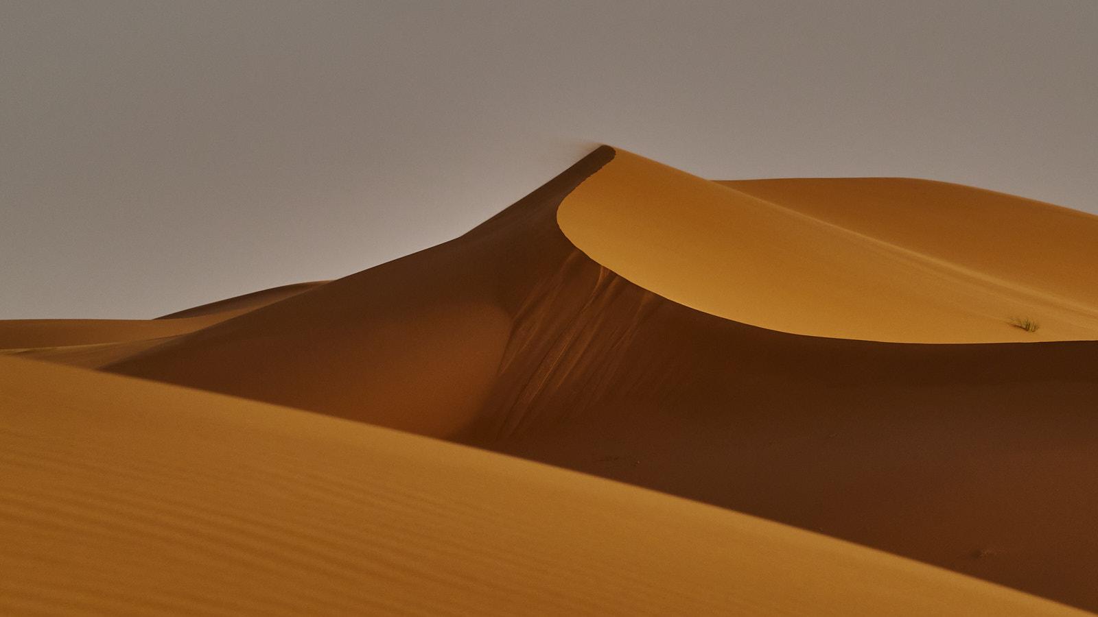 Descobrint racons Desert Merzouga. Morocco
