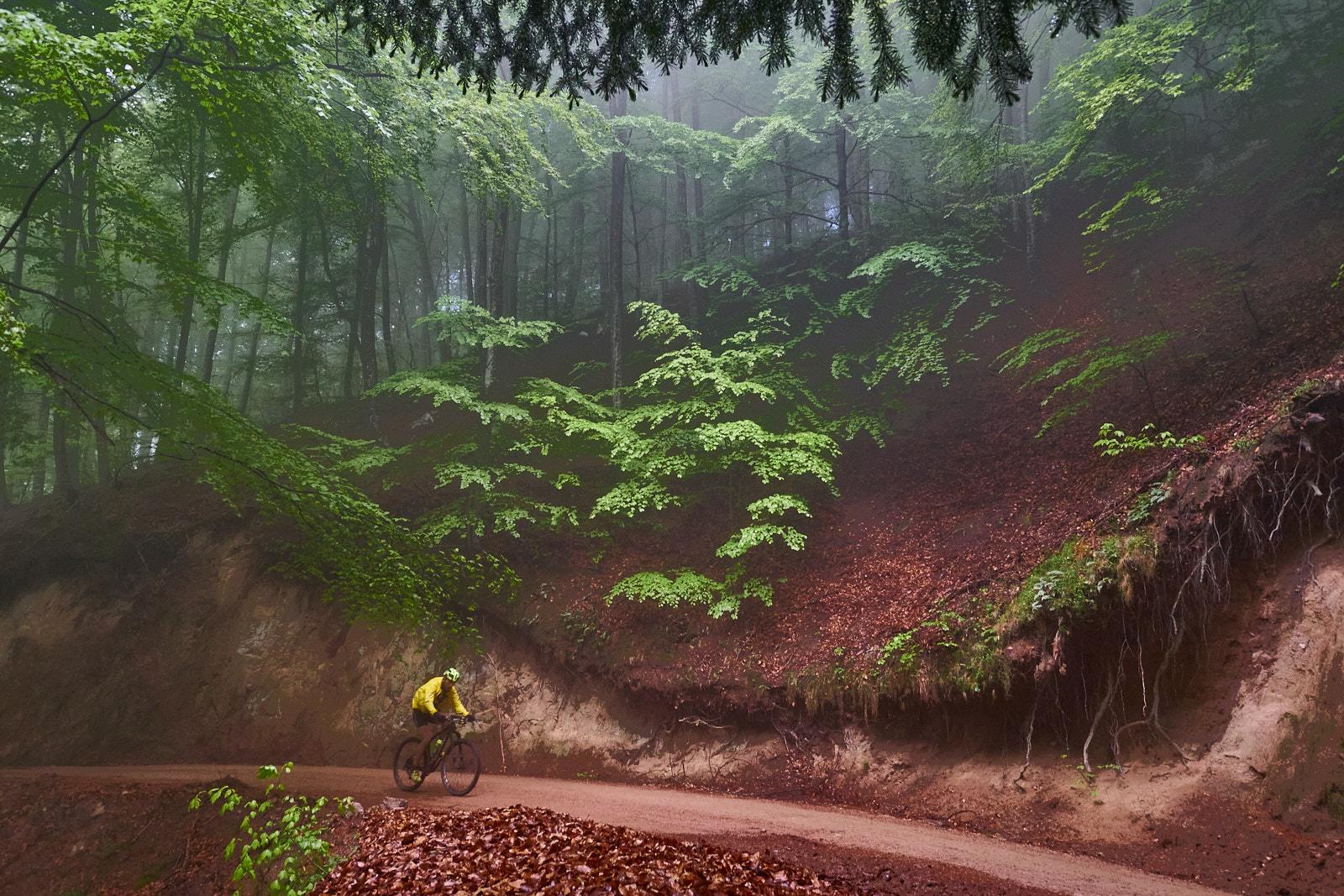 Pedalada BTT pel Parc Natural del Montseny